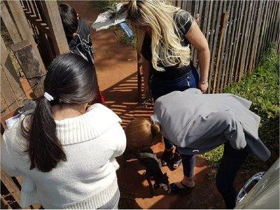 Rescatan a perros con severo estado de desnutrición