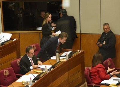 Castiglioni vuelve a ocupar su banca en Senado