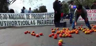 MAG trabajó solo con 60% de tomateros para evitar superproducción