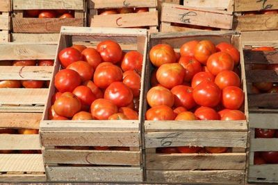 Ante cese de contrabando, tomate local podría costar G. 3500, según MAG