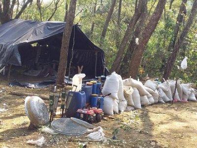 Destruyen más de 24 toneladas de marihuana en Amambay