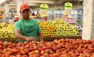 HOY / Invitan a feria del tomate para ayudar a los productores