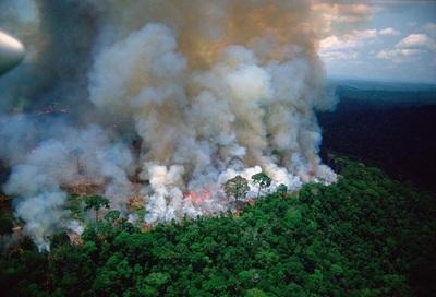 Recuperar lo perdido en el Amazonas tardará décadas, aseguran