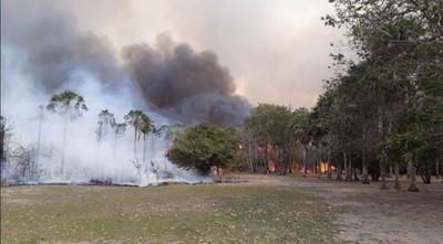 Planean rescate de animales en zonas incendiadas del Chaco