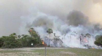 SENADO DECLARA EMERGENCIA AMBIENTAL POR INCENDIO EN EL PANTANAL PARAGUAYO