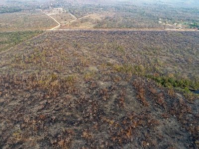 Obispos urgen a Brasil y Bolivia a que tomen medidas por incendios