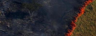 Resumen visual de los incendios que avanzan sin control en la Amazonia