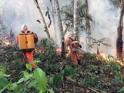 Bolivia urge a Paraguay y Brasil a frenar incendios forestales