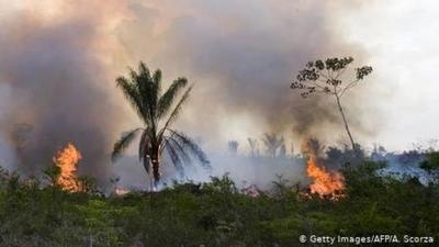 Incendios en el Amazonas: Irlanda amenaza al acuerdo UE