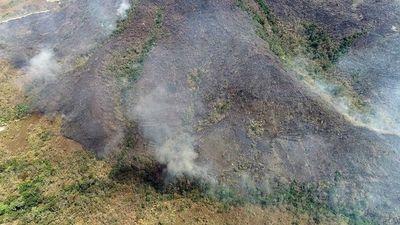 El banco CAF dona medio millón de dólares para los incendios en el Amazonas