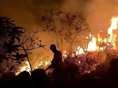 Aumentan los focos de incendio en la Amazonia
