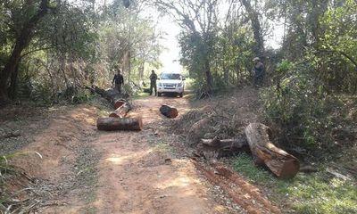 """Sintierras"" vuelven a atacar estancia en Mbuyapey"