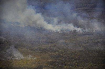 Paraguay perdió 22 millones de hectáreas de su vegetación a causa del incendio en 19 años