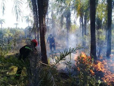 Fuego no está solo en el Pantanal y Amazonía, también en Guairá