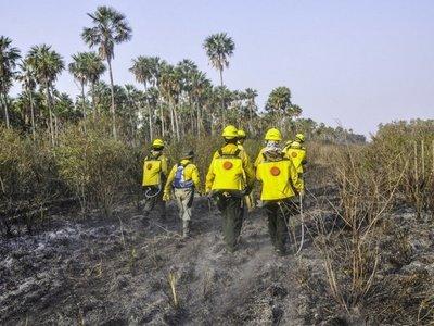 Satélite detecta 418 focos de peligro de incendio por hogueras en Paraguay