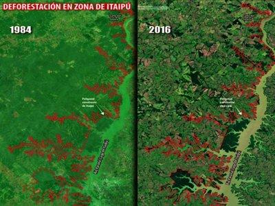 Legislación no ayuda a proteger las áreas silvestres de franja de Itaipú