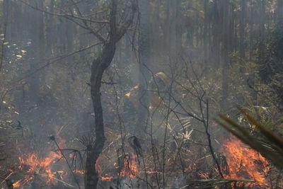 Bomberos reportan nuevos focos de incendio en Pantanal paraguayo