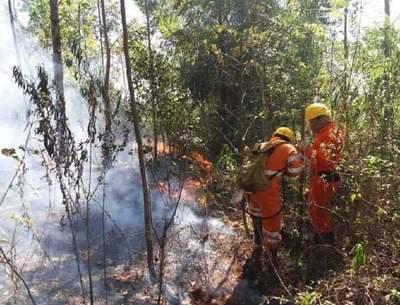 Fuego arrasa de nuevo con bosques en Pantanal chaqueño y otras localidades
