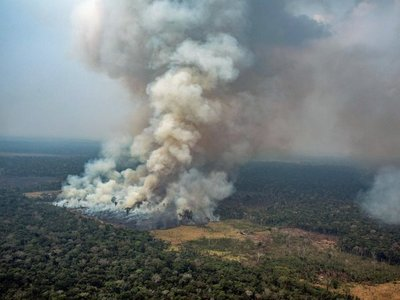 El G7 moviliza USD 20 millones para combatir el fuego en la Amazonía