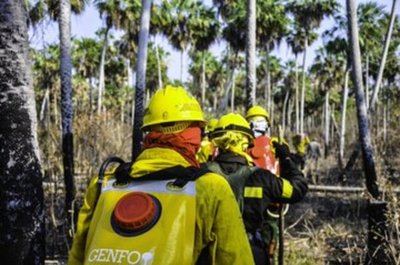 Existen 16 focos de incendios en Bahía Negra