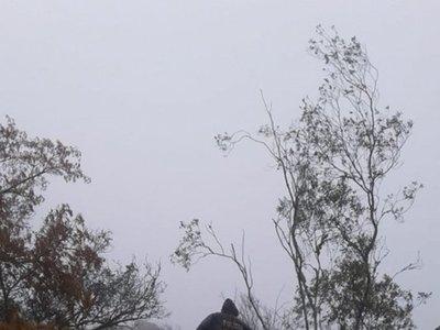 Extraña denuncia de vecinos sobre el cerro Cristo Rey