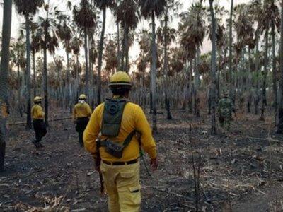 Lluvia alivió situación en el Chaco y autoridades confían en aplacar incendios