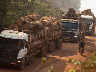 Incendios en la Amazonía amenazan a pueblos indígenas aislados