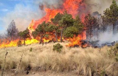 Persisten en Bolivia cinco incendios sin controlar