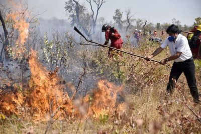 Presidente Evo Morales, de adalid ambientalista a villano