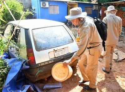 Dengue: 278 casos sospechosos