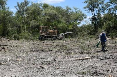 MADES impone fuerte multa a Ganadera por desmonte de 2.974 hectáreas