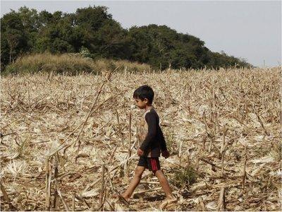 Estudio de Itaipú del 75 advertía a los indígenas  a no  dejar sus tierras