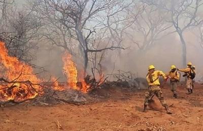 Fuertes vientos reavivan fuego en extremo norte del Chaco