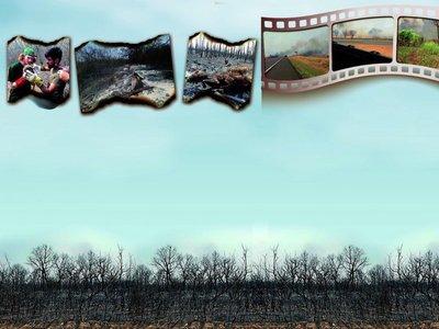 Fuego se apodera de los bosques del país