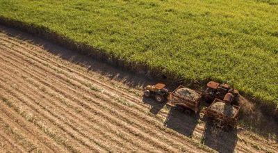 Créditos para agronegocios crecieron 28%