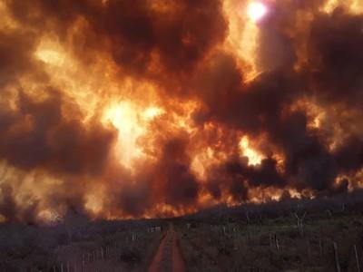 Gobierno declara emergencia ambiental para los departamentos de Boquerón y Alto Paraguay