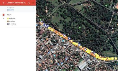 Censan con Google Maps a los árboles del Botánico que serán afectados por viaducto