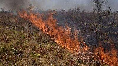 """Incendios en el Amazonas: el fuego sigue """"fuera de control"""" en Bolivia"""