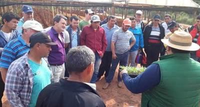 El MAG organizó gira técnica sobre producción de hortalizas y construcción de invernadero rustico