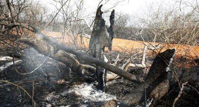 Gobierno de Bolivia vuelve a descartar emitir declaración de desastre por incendios