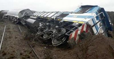 Tren chocó contra una vaca  y sus siete vagones volcaron
