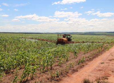 Coordinadora Agrícola del Paraguay molesta por el manoseo a un ministerio emblemático