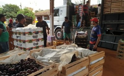 Varias inconsistencias en documentos y cargas de camiones retenidos