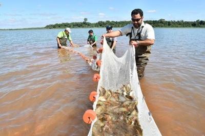 Con más de 3 millones de ejemplares, Itaipu registra nuevo récord en producción de peces