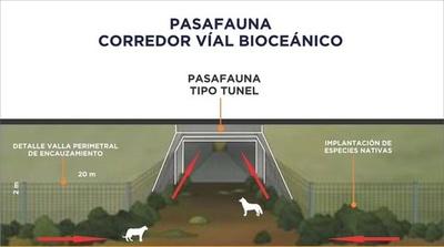 Pasafaunas en la ruta Bioceánica