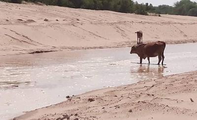 HOY / Pilcomayo: el 30% de las aguas ya ingresan por el nuevo canal