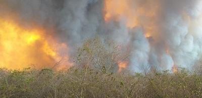 Incendios se descontrola en cercanías del Chovoreca