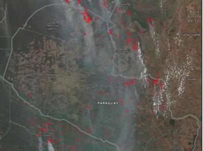 """HOY / Incendios forestales """"fácilmente"""" podrían afectar 150.000 hectáreas, advierte Infona"""