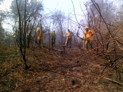 Aprueban donación de US$ 100.000 para enfrentar incendios forestales en el país