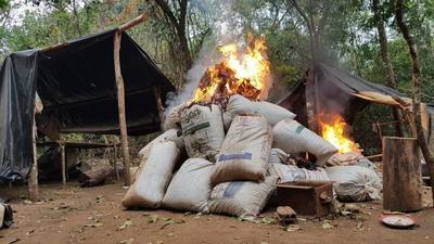 Antidrogas anulan 286 toneladas de marihuana en Amambay